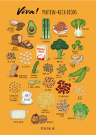 Protein-Rich Foods Illustrated