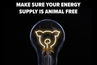 Is Your Energy Supply Vegan?