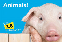 Get Active for Animals with the 2.6 Challenge