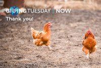 Thanks for Your Generosity This #GivingTuesday!