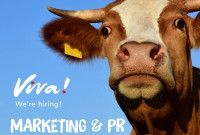 PR & Marketing Manager