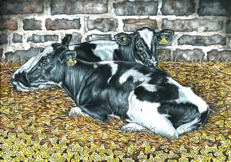 The-Dairy-Project-5---One-in-a-million