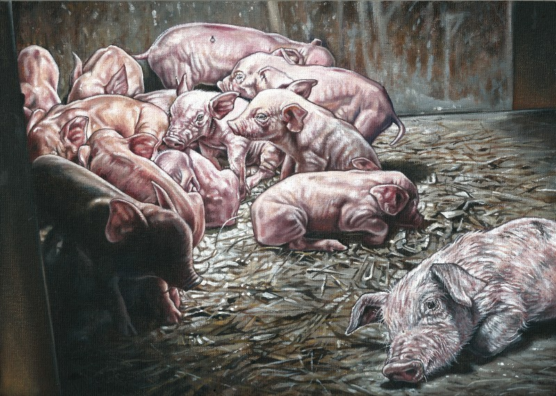 The-Pig-Project-5---No-kind-of-life.jpg