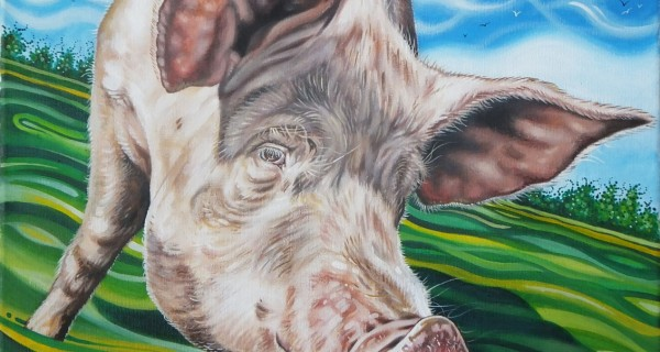 The-Pig-Project-6---Clover.jpg