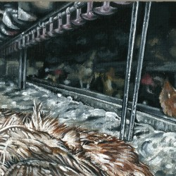 The true price of eggs - detail 3