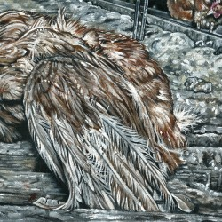 The true price of eggs - detail 5